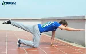 Teekiu Sport & FItness_Birddog 2